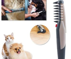 catlady, cattraining, and catgrooming image