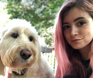 animals, bands, and chrissy costanza image