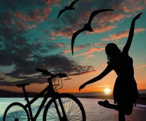 aves, estilo, and libertad image