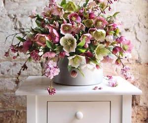 belleza, naturaleza, and decoracion image
