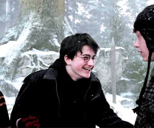 amor, daniel radcliffe, and friendship image