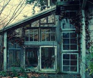 architecture, beautiful, and windows image