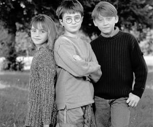 hermione, ron, and harry image