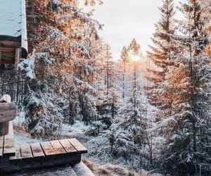 snow, wallpaper, and winter image