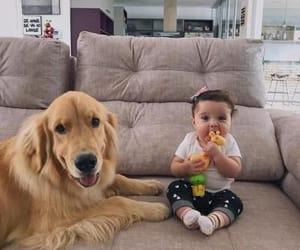 animals, babies, and dog image