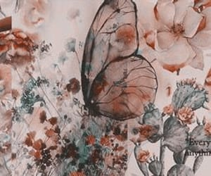 header, butterfly, and twitter image