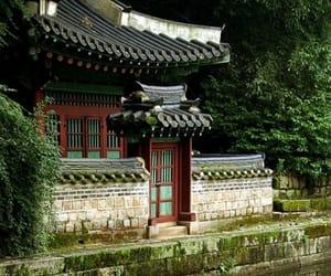 2009, korean, and nature image