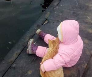 babies, cats, and sweet image
