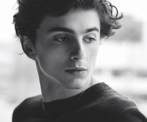 timothee chalamet, beautiful boy, and cute image