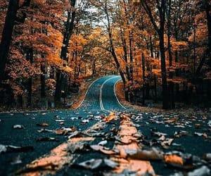 it's a long road~