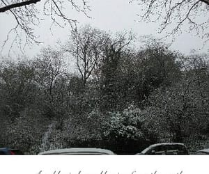 Blanc, garden, and winter image