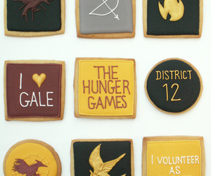 the hunger games and district 12 image