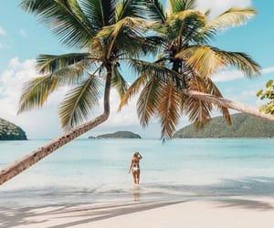 beach, verão, and praia image