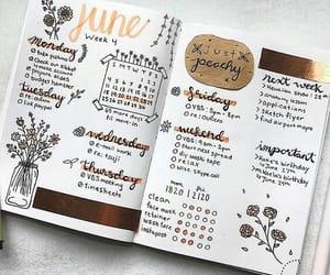 bujo, journaling, and journal image
