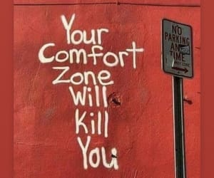 quotes, red, and comfort zone image