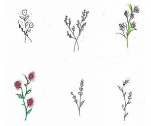 dibujo, draw, and drawing image