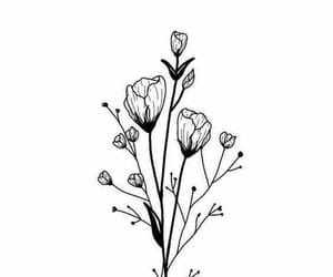 drawing, draw, and flower image