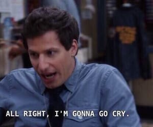 cry, meme, and jake peralta image