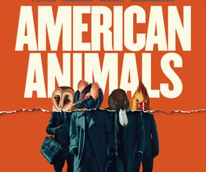 movie, poster, and american animals image