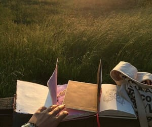 book, nature, and sunset image