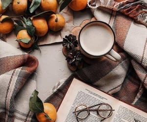 autumn, beautiful, and coffee image
