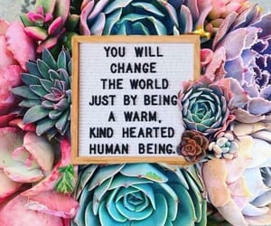 cactus, change the world, and quote image