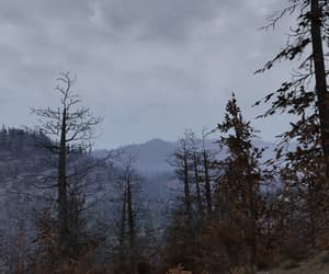 fallout, landscape, and gloomy image