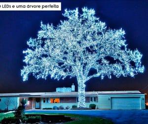 blue, christmas, and leds image