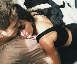 bed, couple, and dog image