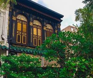 singapore, travel, and wanderlust image