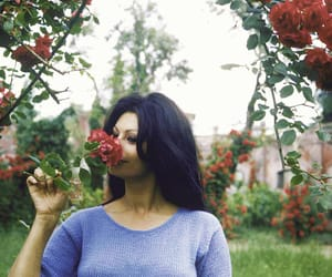 sophia loren, vintage, and beauty image
