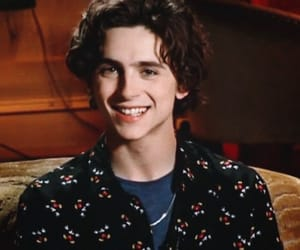 timothee chalamet and beautiful boy image