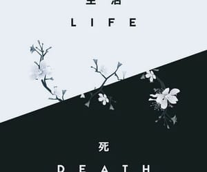 wallpaper, background, and life image