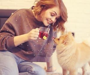 cookie, tea, and dog image