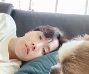 jhope, bts, and jung hoseok image