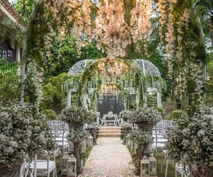 beautiful, nature, and wedding venue image