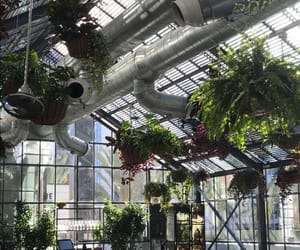 greenhouse, lunch, and party image