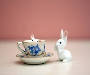 bunny, tea cup, and hiding image