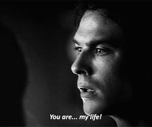 gif, the vampire diaries, and damon salvatore image