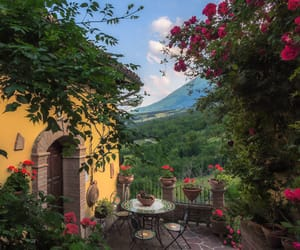 italy, travel, and flowers image