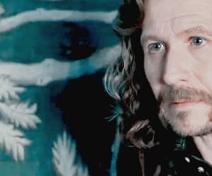 gif, sirius black, and harry potter image