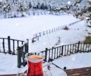 drinks, winter, and tea image