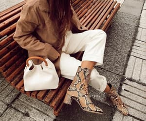 animal print, ankle boots, and blogger image