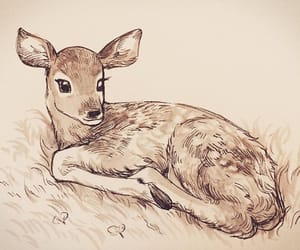 animals, art, and creativity image
