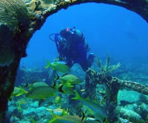 scuba diving, key west, and treasures image