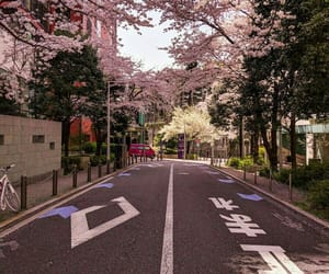 aesthetic, japan, and city image