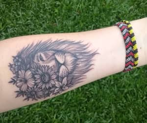flower, lion, and resilience image
