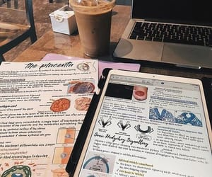 goals, student life, and cute image