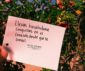 frases, love, and cosquillas image