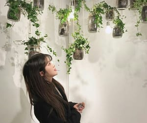 plants, ulzzang, and aesthetic image
